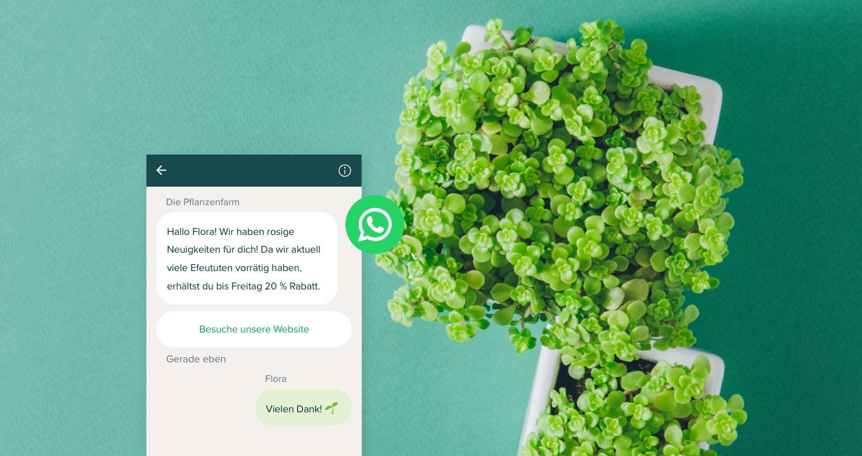 Was ist WhatsApp Business? Die Unterschiede zwischen WhatsApp und WhatsApp Business