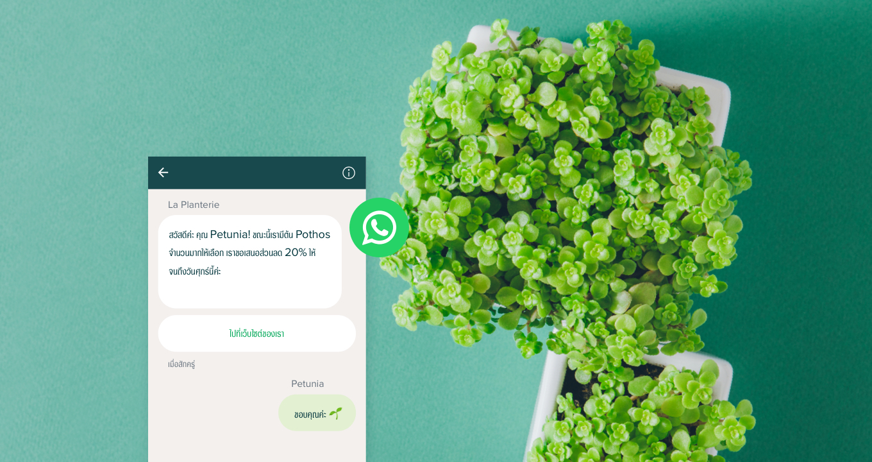 WhatsApp Business คืออะไร เข้าใจความแตกต่างระหว่าง WhatsApp และ WhatsApp Business