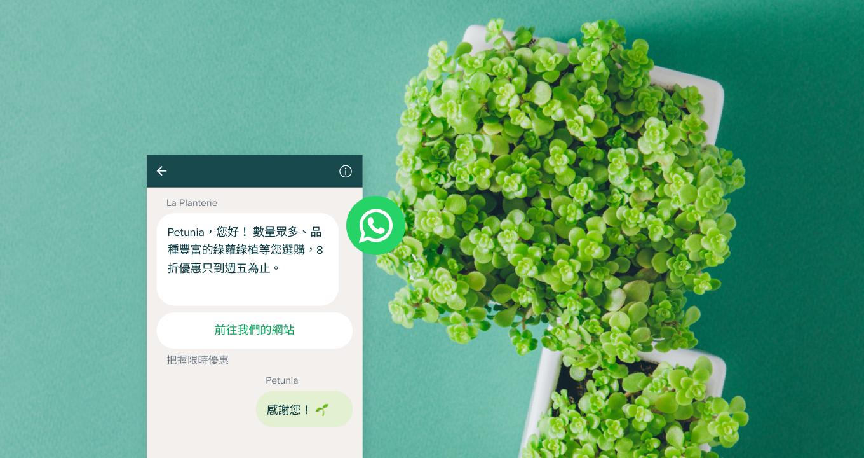 什麼是 WhatsApp Business?了解 WhatsApp 和 WhatsApp Business 之間的區別