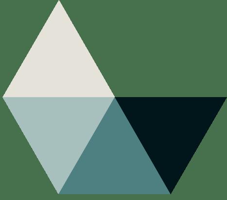 Logo: Asolvi
