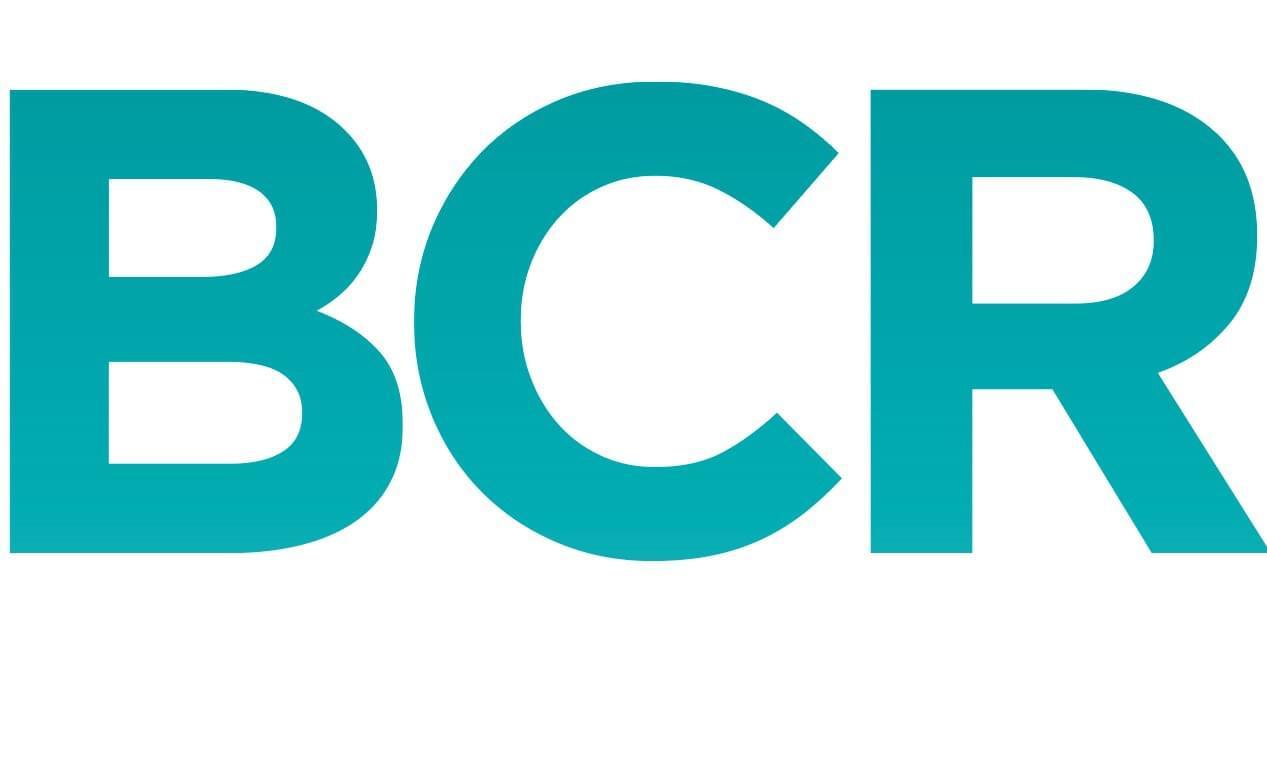Logo: BCR Zendesk Partners