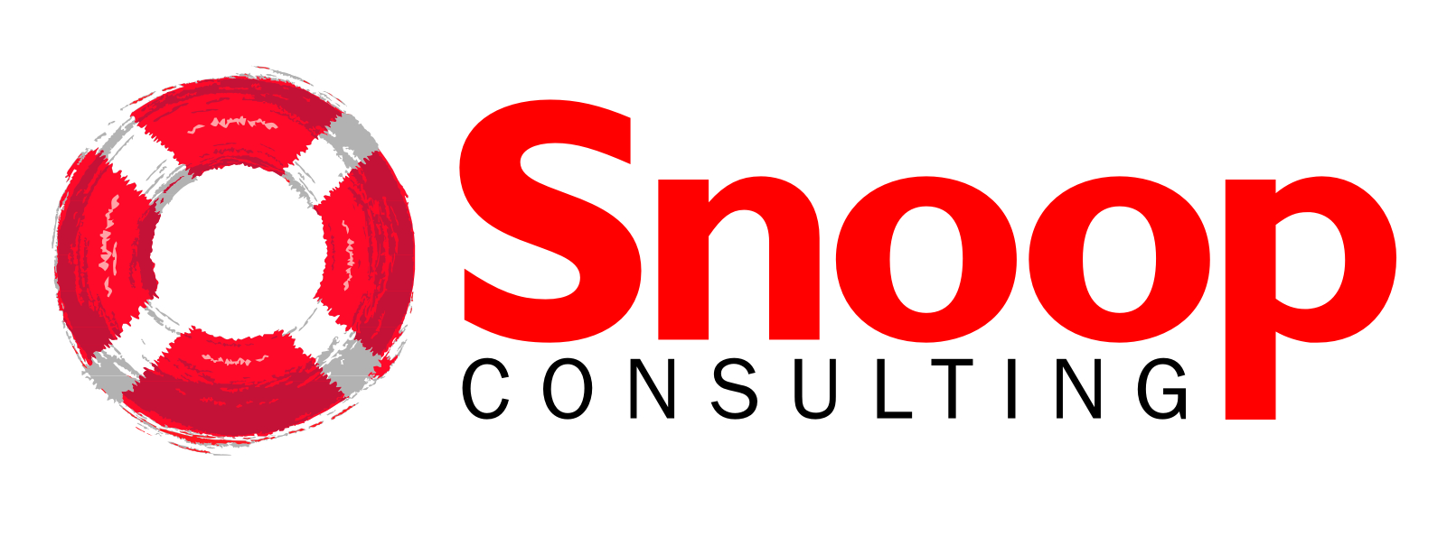 Snoop Consulting